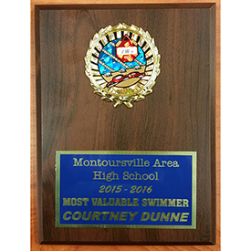 Montoursville Area High School